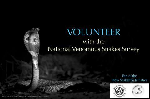 IndianSnakes national venomous snakes survey India snakebite initiative